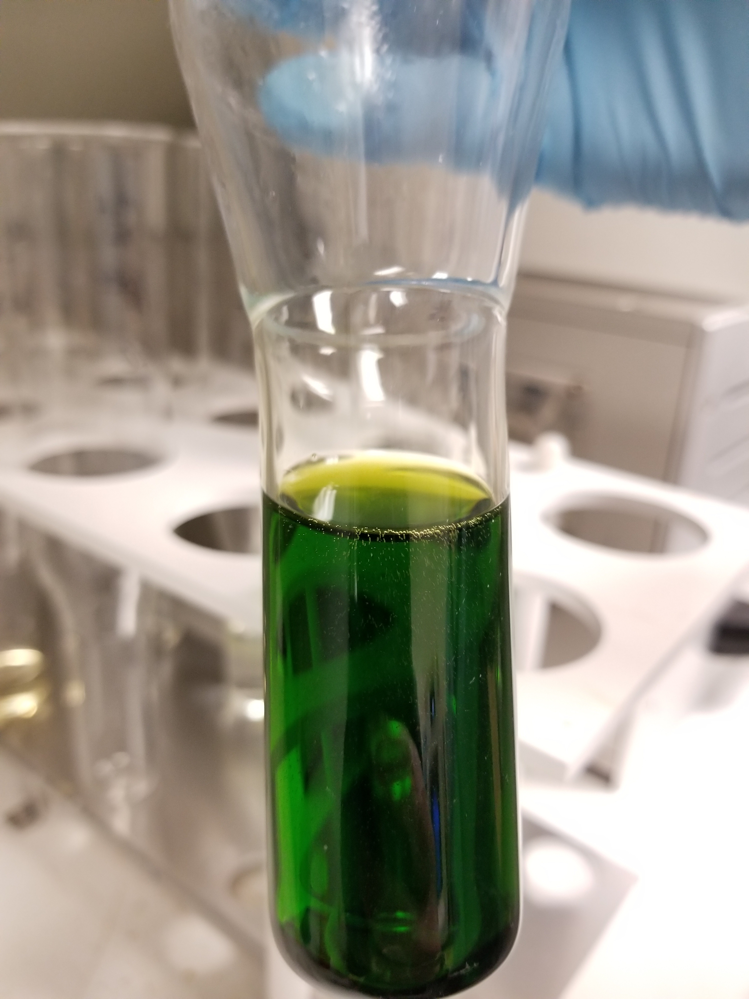 20180129_162151 Dilute with H2O and add 1 mL H2O2.jpg